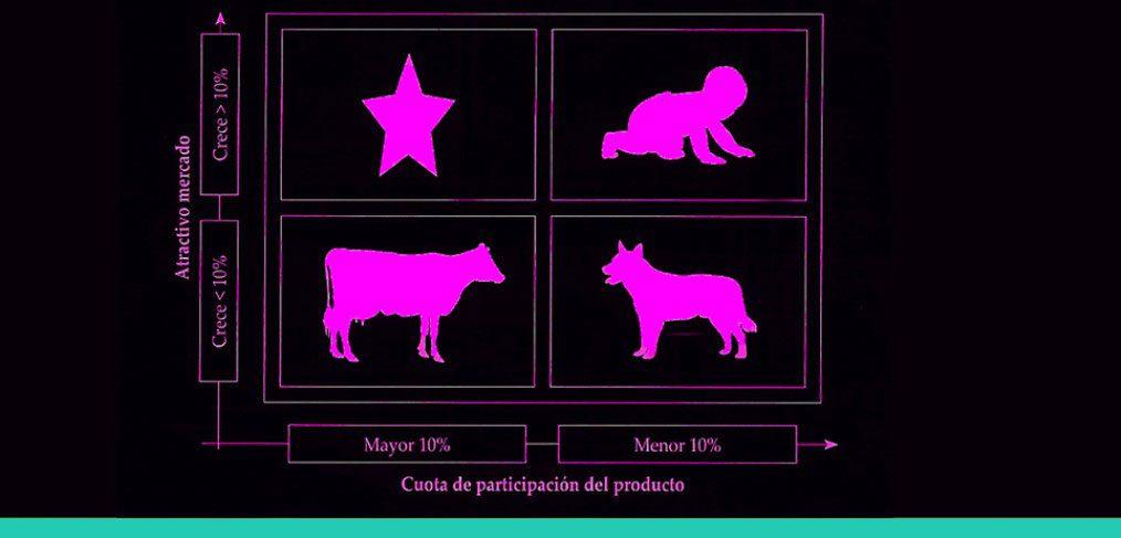 producto perro ejemplo